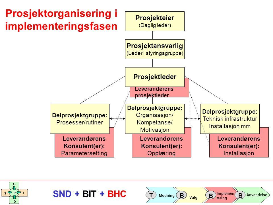 Prosjektorganisering i implementeringsfasen