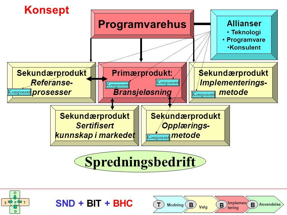 Spredningsbedrift Konsept Programvarehus Allianser Sekundærprodukt