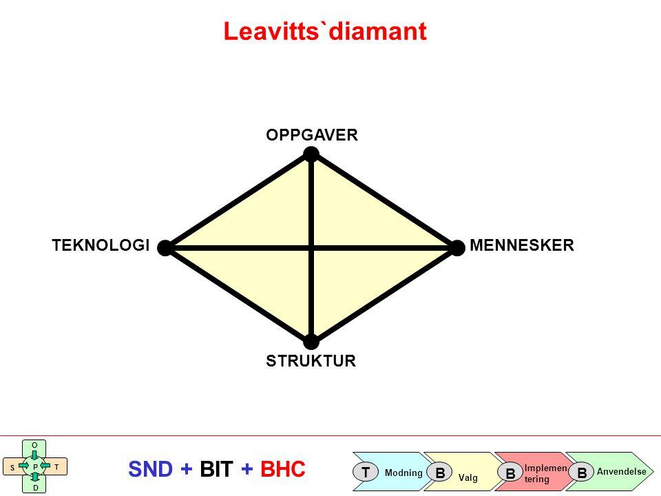 Leavitts`diamant STRUKTUR OPPGAVER MENNESKER TEKNOLOGI