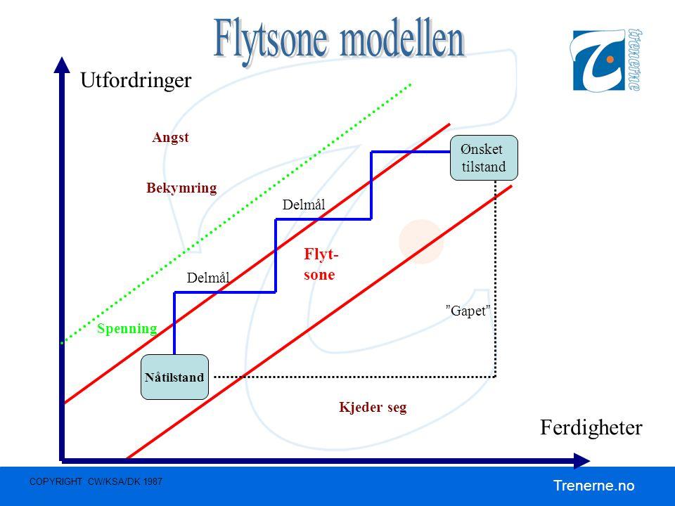 Flytsone modellen Utfordringer Ferdigheter Flyt- sone Angst Ønsket