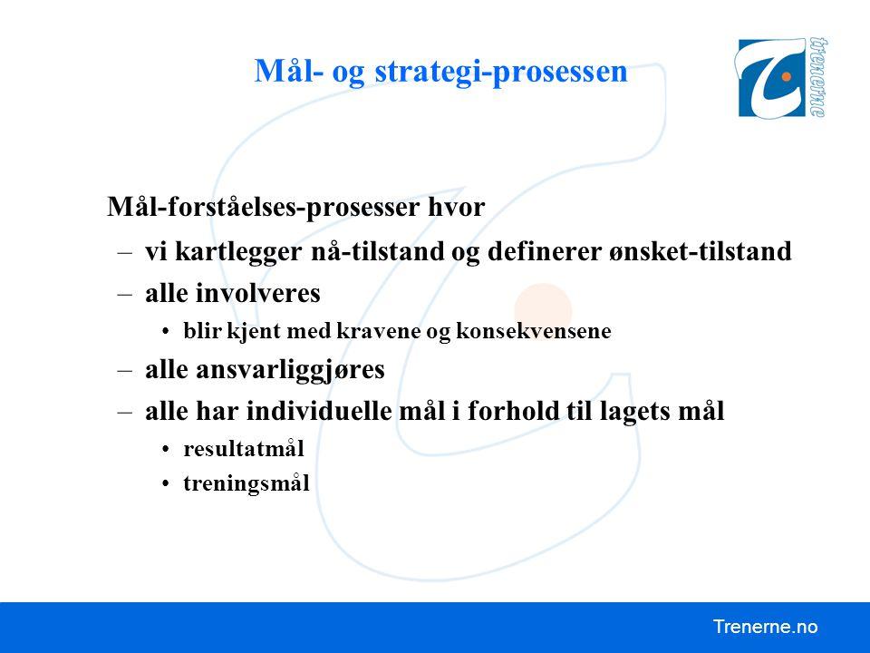 Mål- og strategi-prosessen
