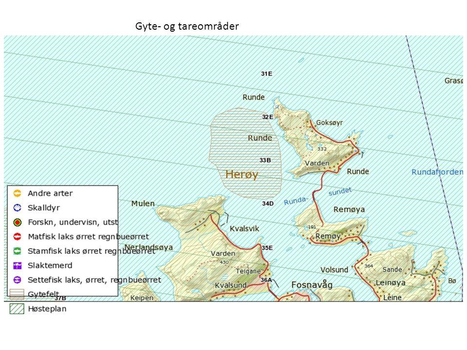 Gyte- og tareområder