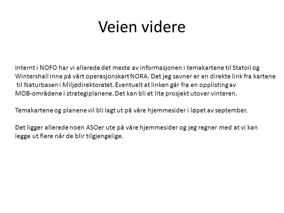 Veien videre Internt i NOFO har vi allerede det meste av informasjonen i temakartene til Statoil og.