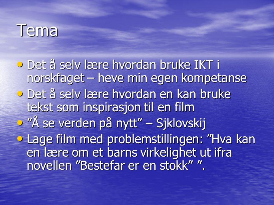 Tema Det å selv lære hvordan bruke IKT i norskfaget – heve min egen kompetanse.