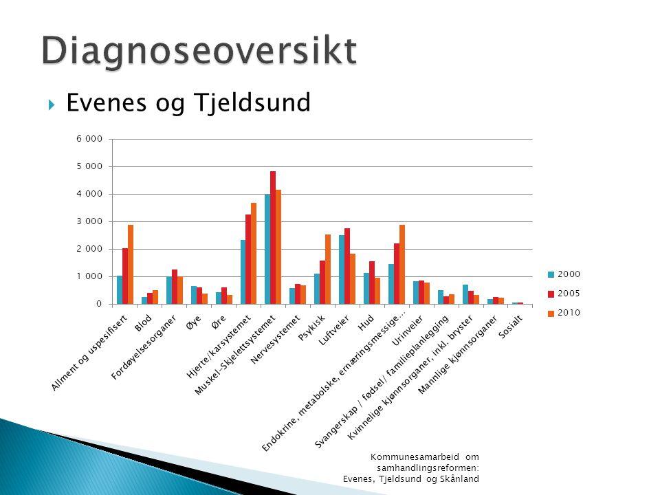 Diagnoseoversikt Evenes og Tjeldsund