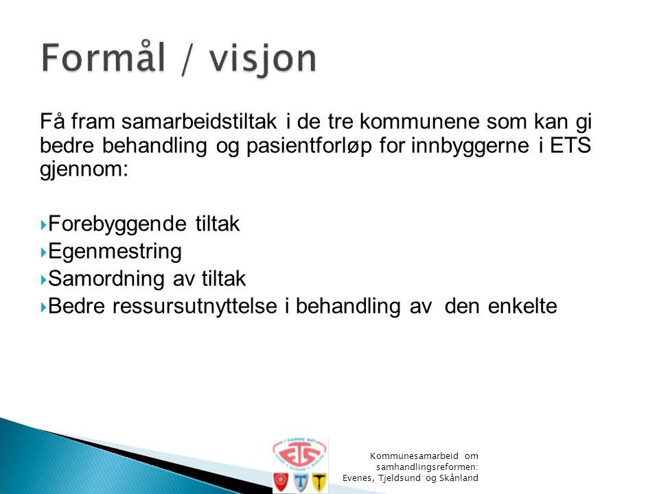 Formål / visjon Få fram samarbeidstiltak i de tre kommunene som kan gi bedre behandling og pasientforløp for innbyggerne i ETS gjennom: