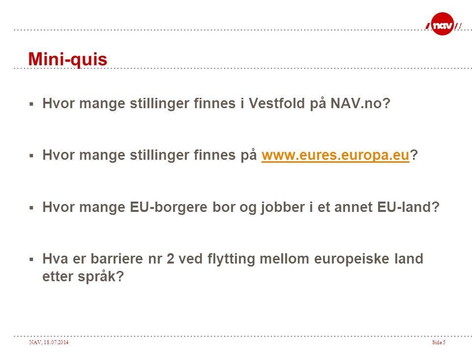Mini-quis Hvor mange stillinger finnes i Vestfold på NAV.no
