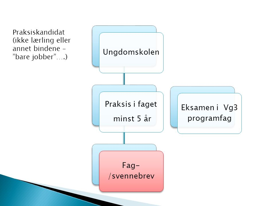 Eksamen i Vg3 programfag