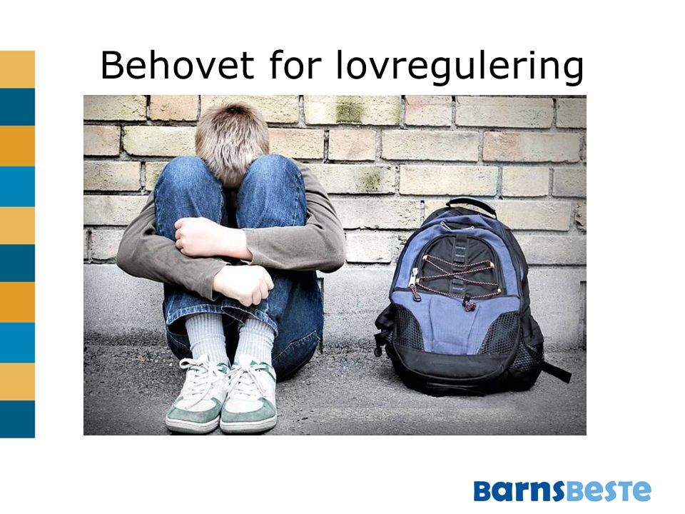 Behovet for lovregulering