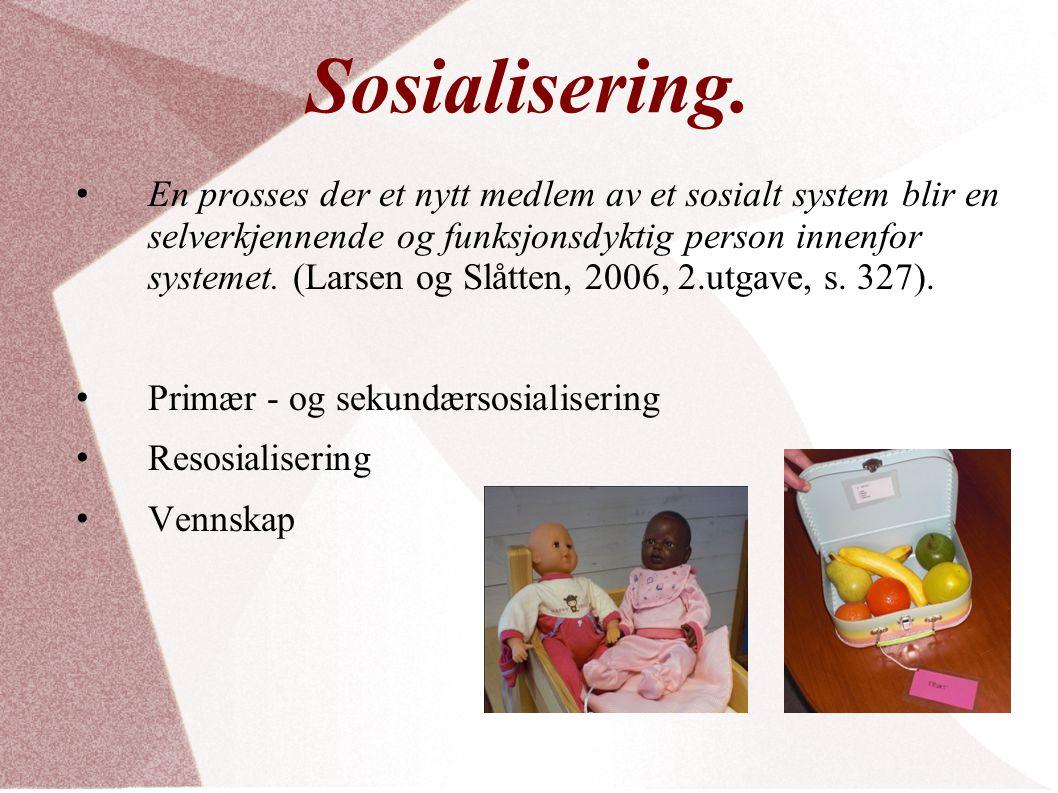Sosialisering.