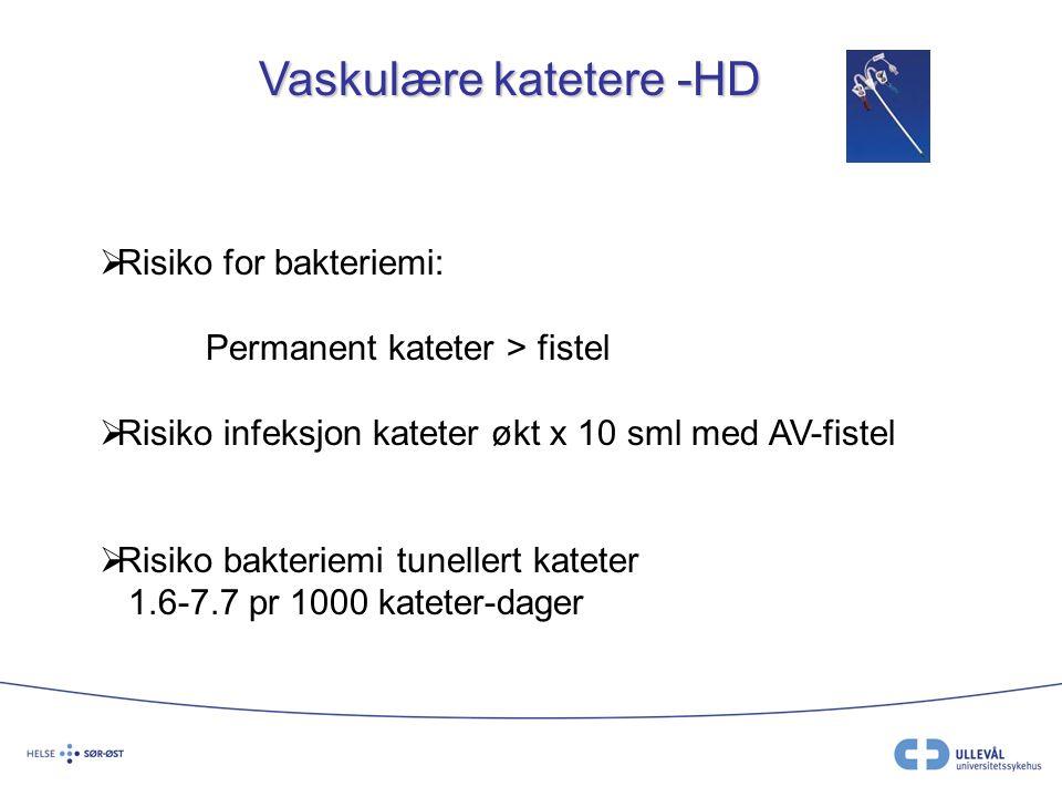 Vaskulære katetere -HD