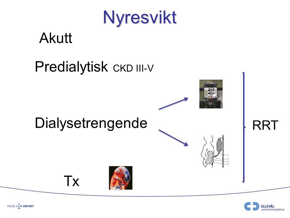 Nyresvikt Akutt Predialytisk CKD III-V Dialysetrengende Tx RRT