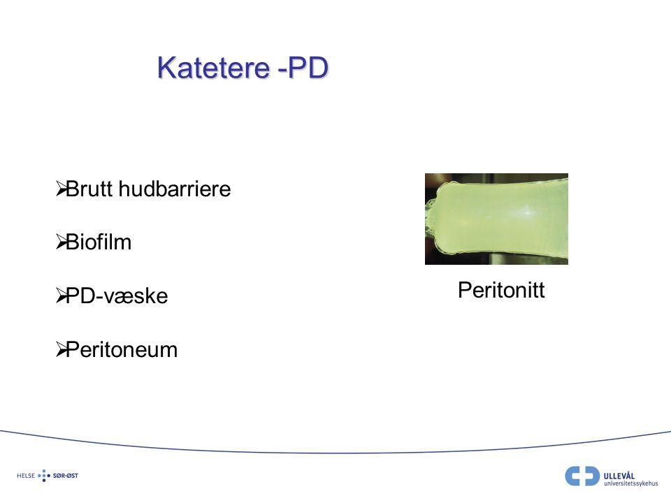 Katetere -PD Brutt hudbarriere Biofilm PD-væske Peritoneum Peritonitt