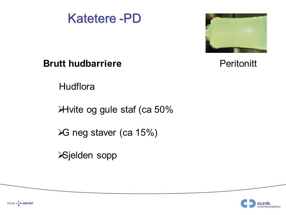 Katetere -PD Brutt hudbarriere Hudflora Hvite og gule staf (ca 50%