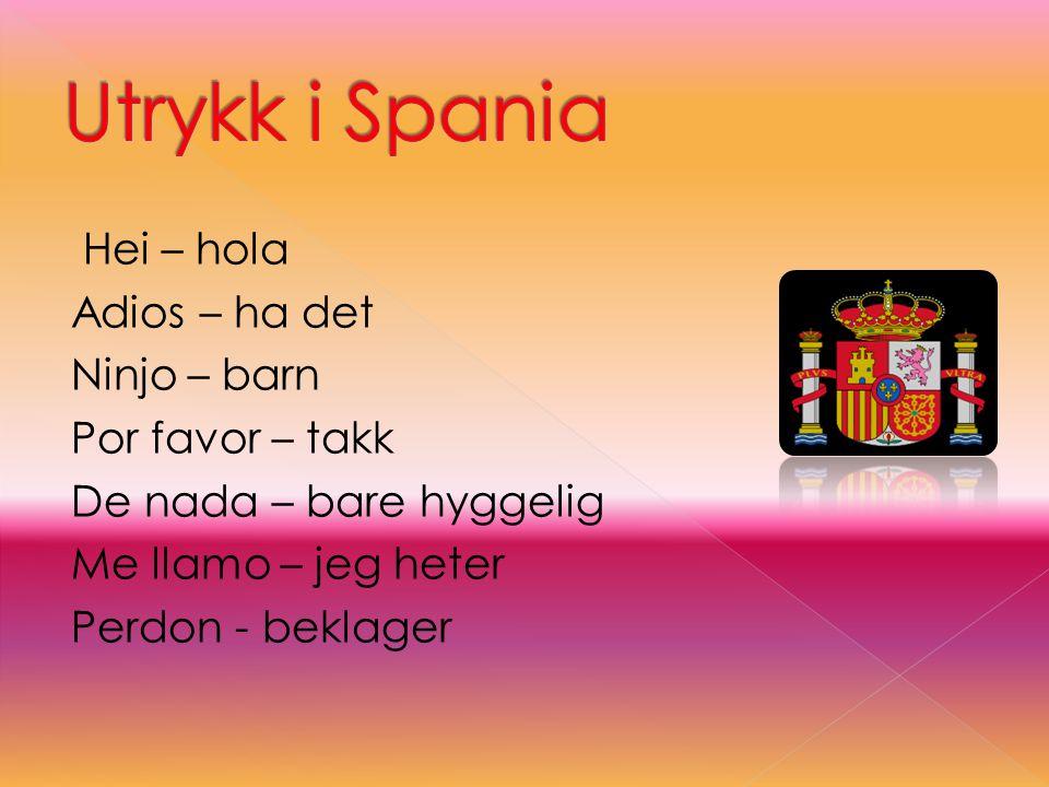 Utrykk i Spania Hei – hola Adios – ha det Ninjo – barn Por favor – takk De nada – bare hyggelig Me llamo – jeg heter Perdon - beklager
