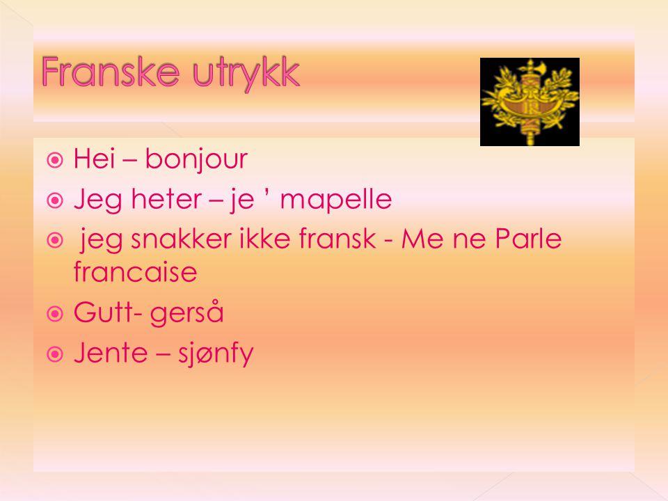 Franske utrykk Hei – bonjour Jeg heter – je ' mapelle