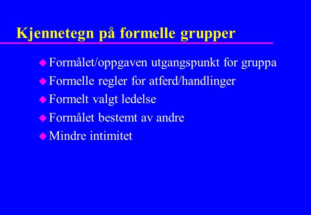 Kjennetegn på formelle grupper