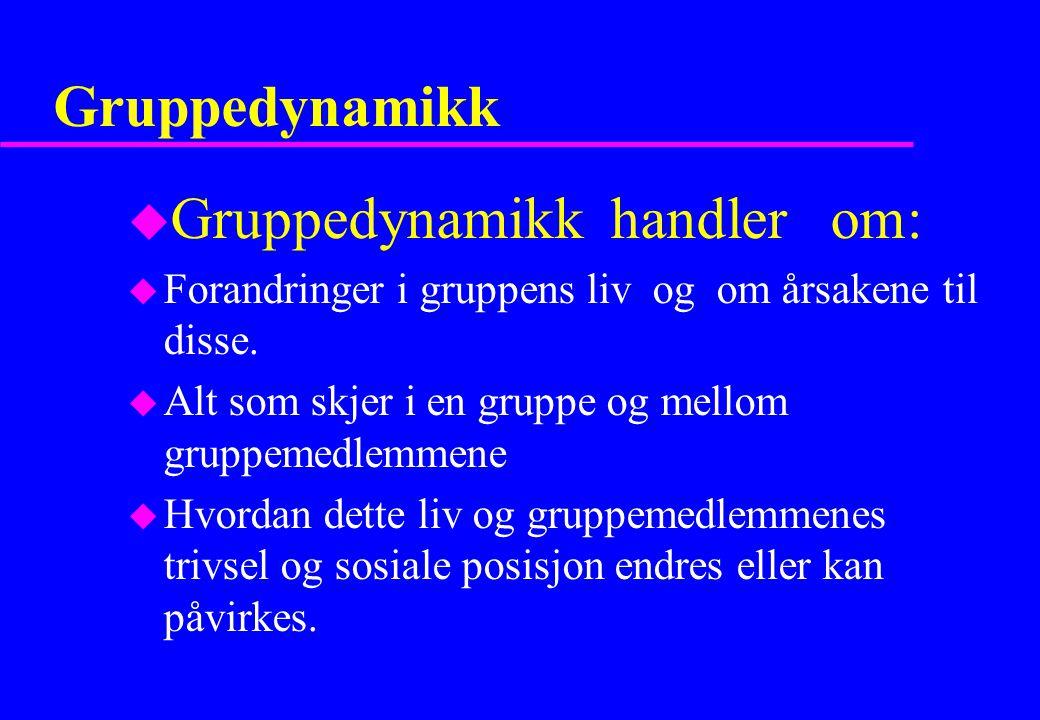 Gruppedynamikk handler om: