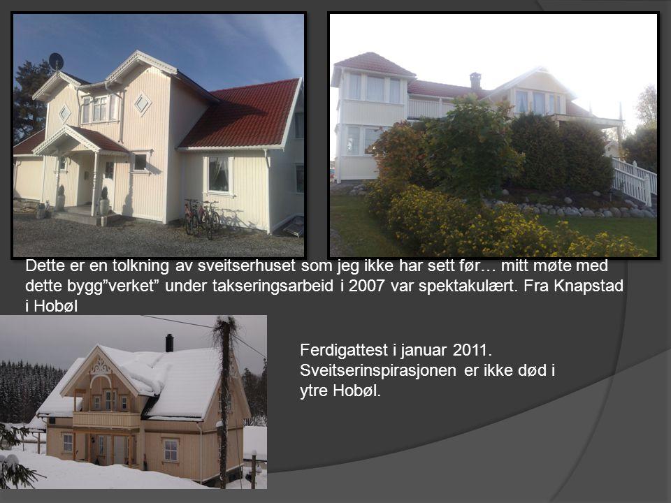 Dette er en tolkning av sveitserhuset som jeg ikke har sett før… mitt møte med dette bygg verket under takseringsarbeid i 2007 var spektakulært. Fra Knapstad i Hobøl