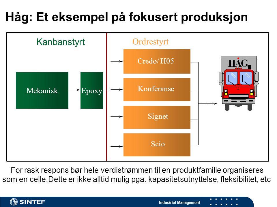 Håg: Et eksempel på fokusert produksjon
