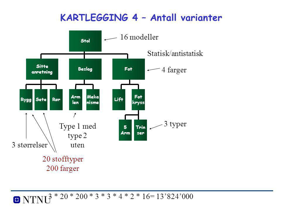 KARTLEGGING 4 – Antall varianter