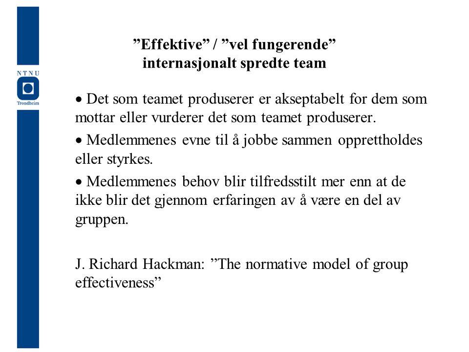 Effektive / vel fungerende internasjonalt spredte team
