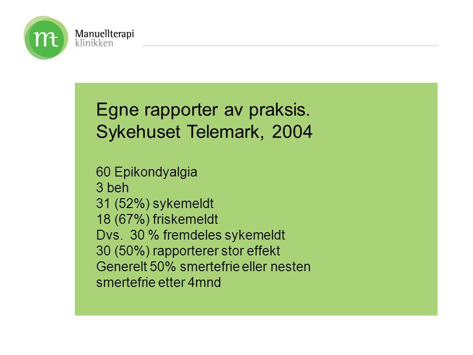 Egne rapporter av praksis. Sykehuset Telemark, 2004