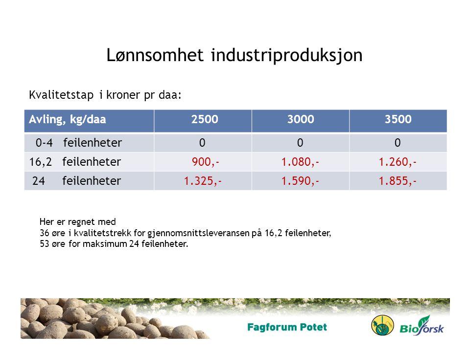 Lønnsomhet industriproduksjon