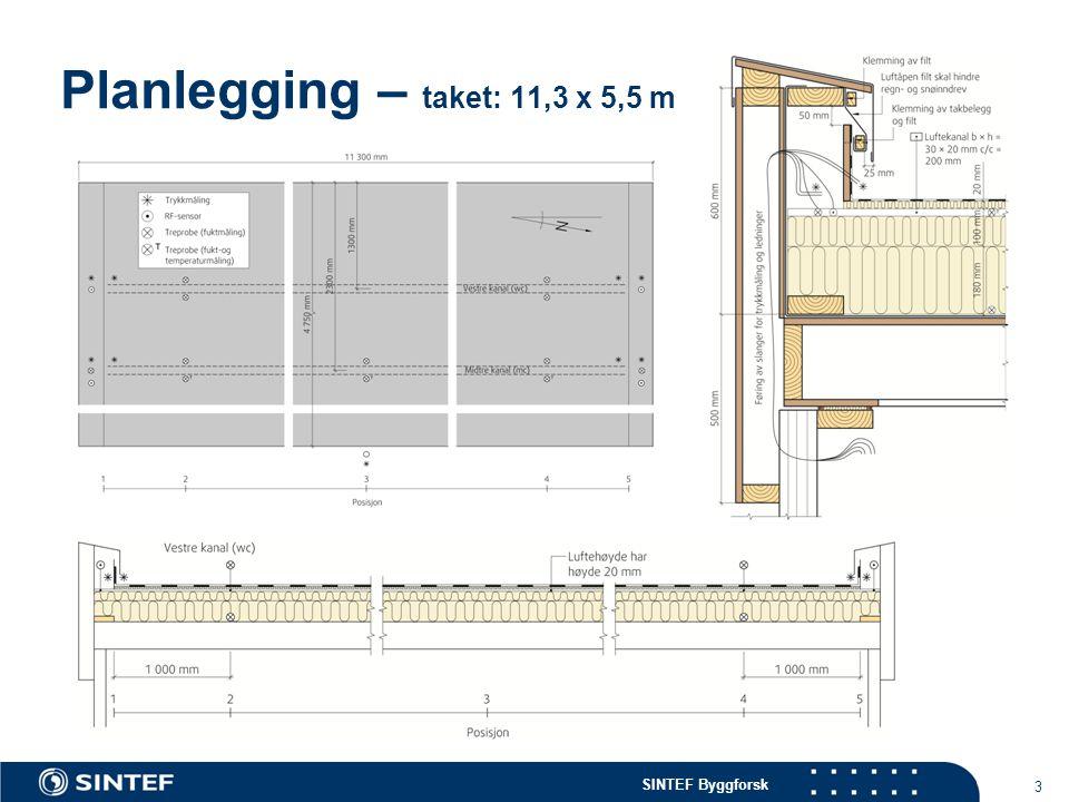 Planlegging – taket: 11,3 x 5,5 m