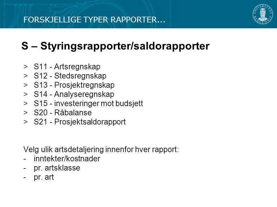 S – Styringsrapporter/saldorapporter