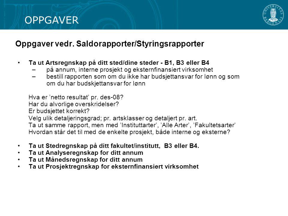 Oppgaver vedr. Saldorapporter/Styringsrapporter
