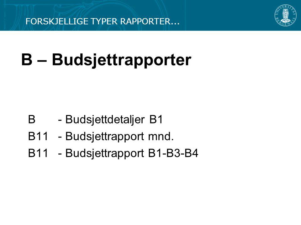 B – Budsjettrapporter B - Budsjettdetaljer B1