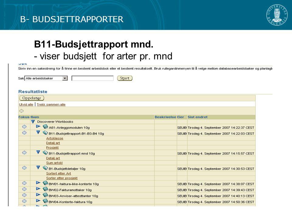 B11-Budsjettrapport mnd. - viser budsjett for arter pr. mnd