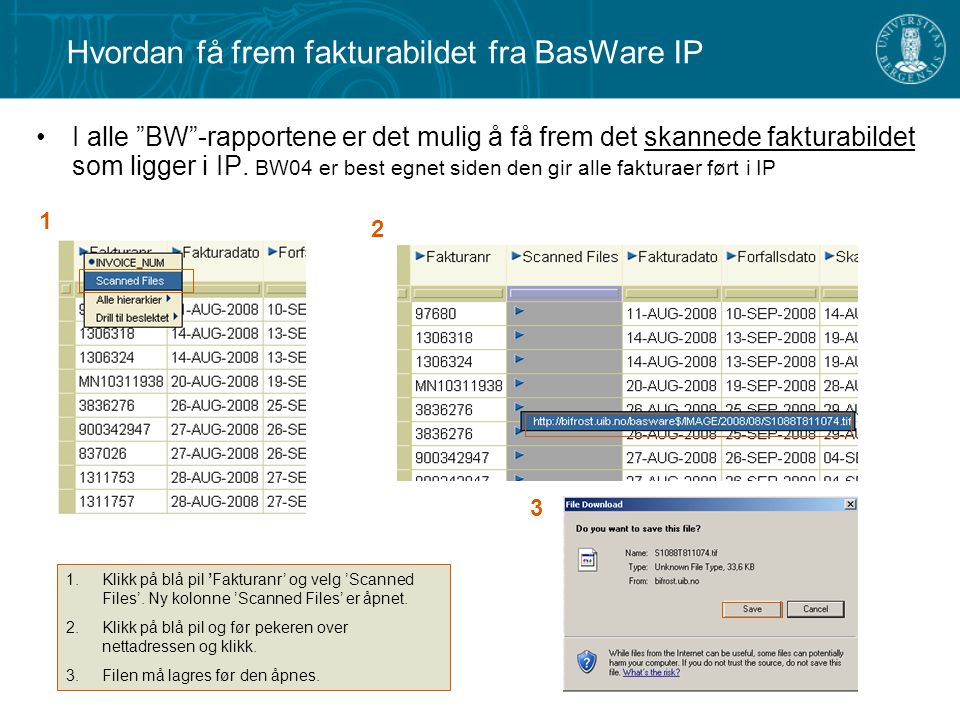Hvordan få frem fakturabildet fra BasWare IP