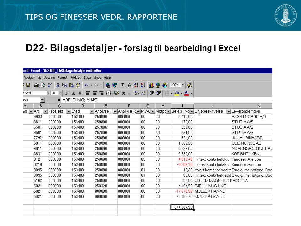 D22- Bilagsdetaljer - forslag til bearbeiding i Excel