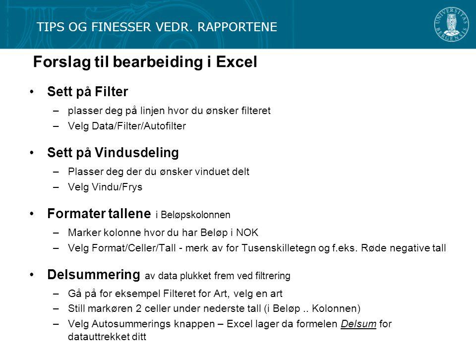 Forslag til bearbeiding i Excel