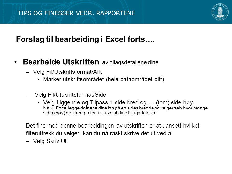 Forslag til bearbeiding i Excel forts….