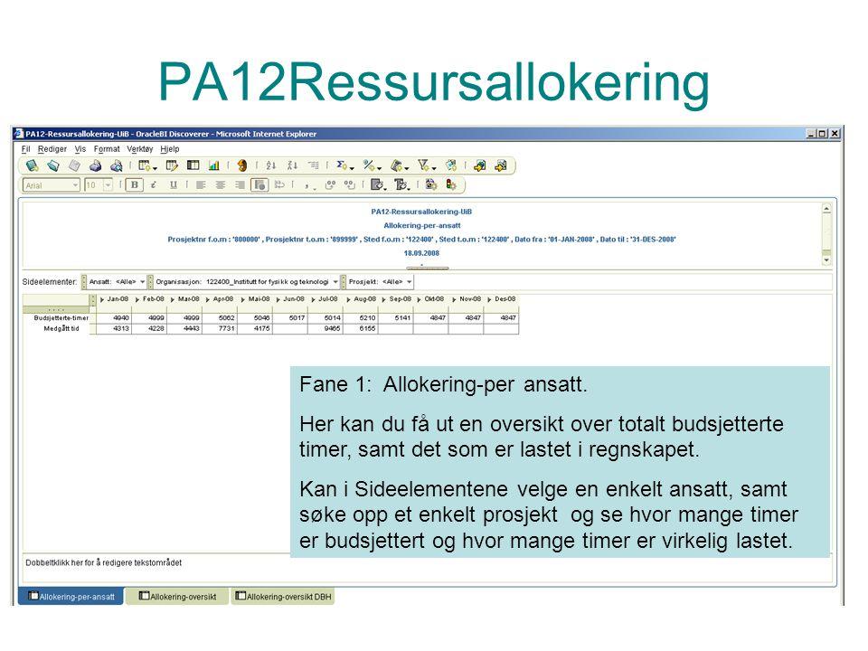 PA12Ressursallokering Fane 1: Allokering-per ansatt.