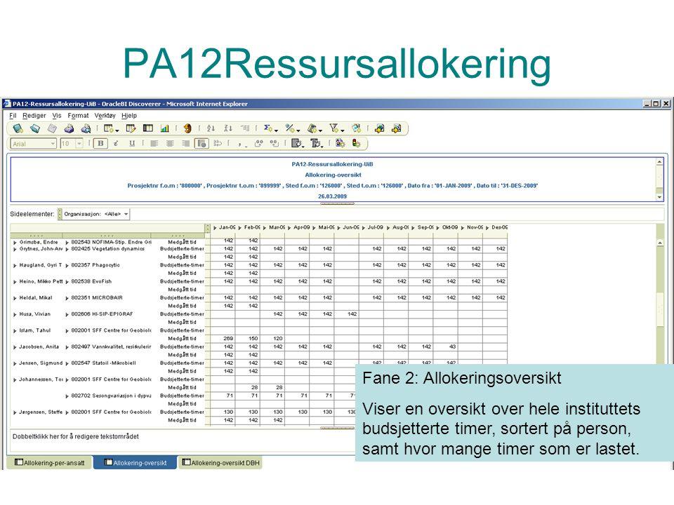 PA12Ressursallokering Fane 2: Allokeringsoversikt