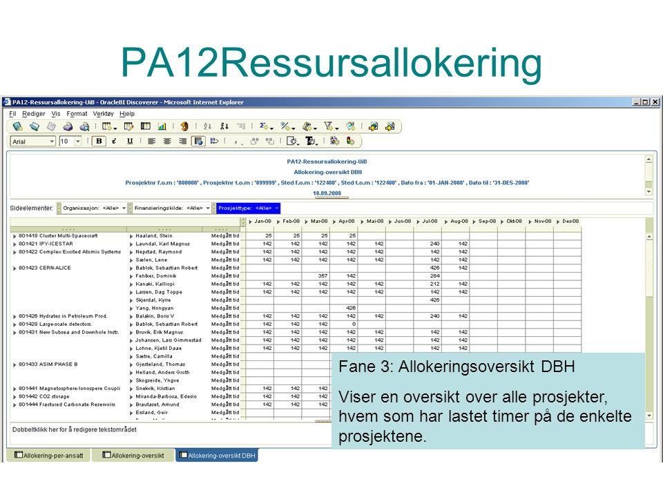 PA12Ressursallokering Fane 3: Allokeringsoversikt DBH