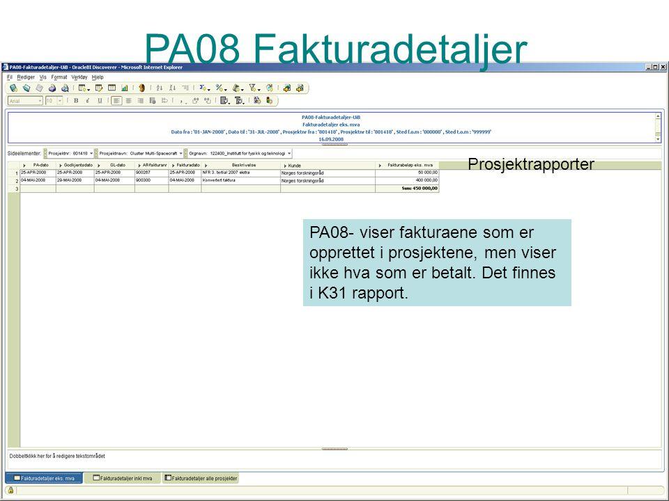 PA08 Fakturadetaljer Prosjektrapporter