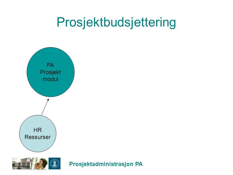 Prosjektbudsjettering