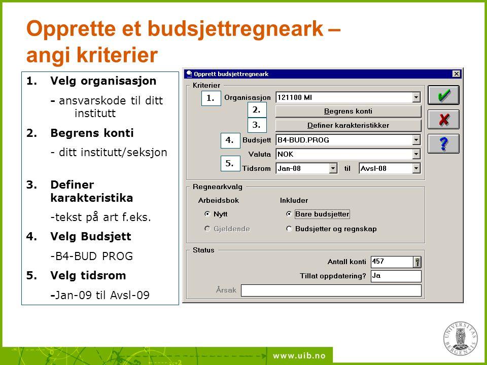 Opprette et budsjettregneark – angi kriterier