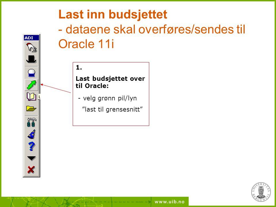 Last inn budsjettet - dataene skal overføres/sendes til Oracle 11i