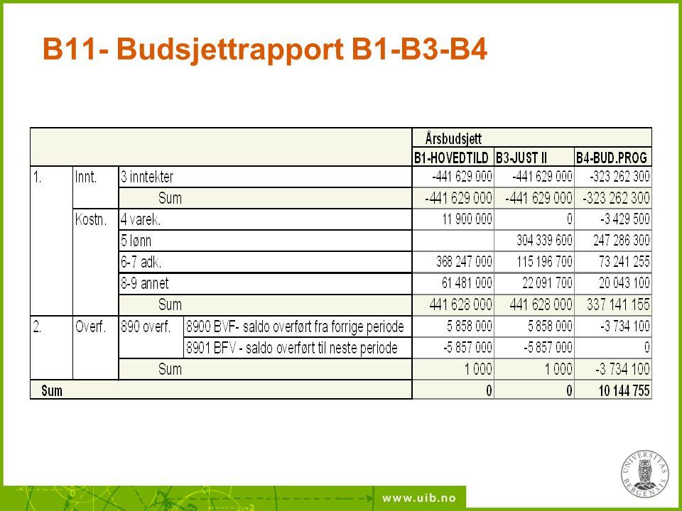 B11- Budsjettrapport B1-B3-B4