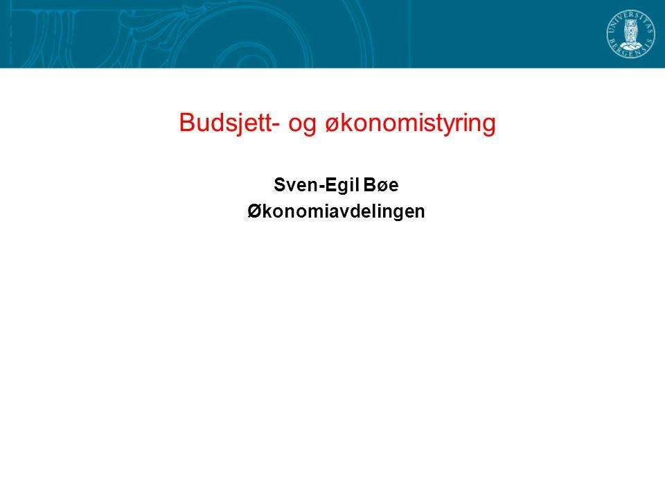 Budsjett- og økonomistyring