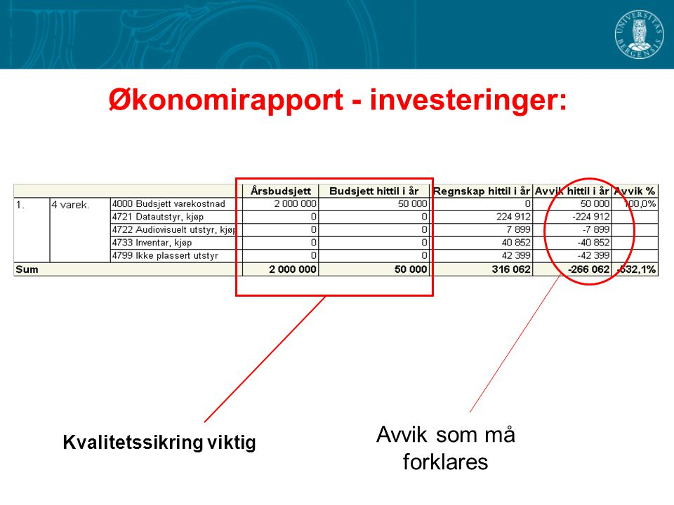 Økonomirapport - investeringer: