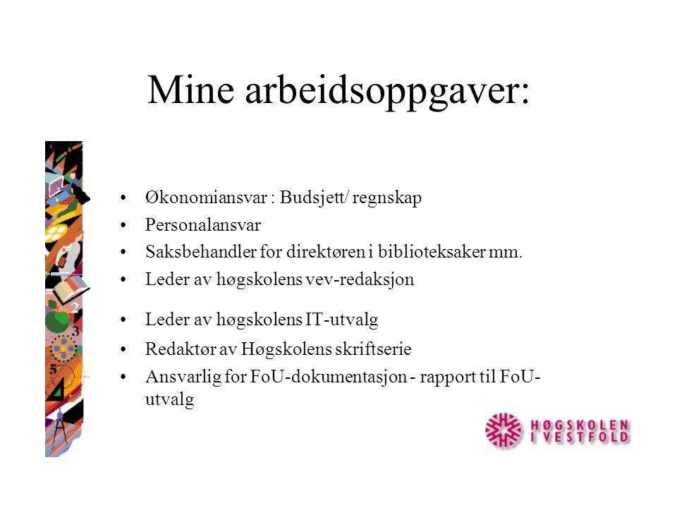 Mine arbeidsoppgaver: