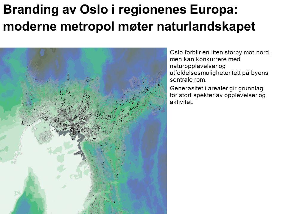 Branding av Oslo i regionenes Europa: moderne metropol møter naturlandskapet