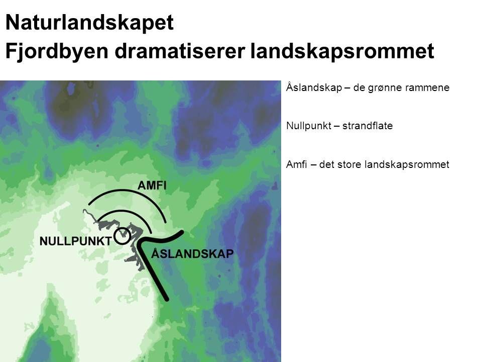 Naturlandskapet Fjordbyen dramatiserer landskapsrommet